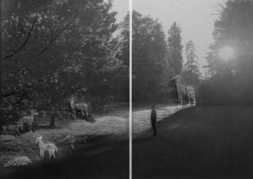 Fading Landscapes ll 02